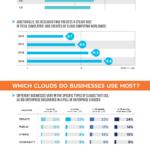 Cloud Infographic: The Cloud Economics