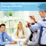 Big Data Analytics For Small Businesses