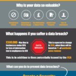 Cloud Infographic: Data Security Risk And Prevention