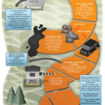 Cloud Infographic: The Road To HIPAA Compliance
