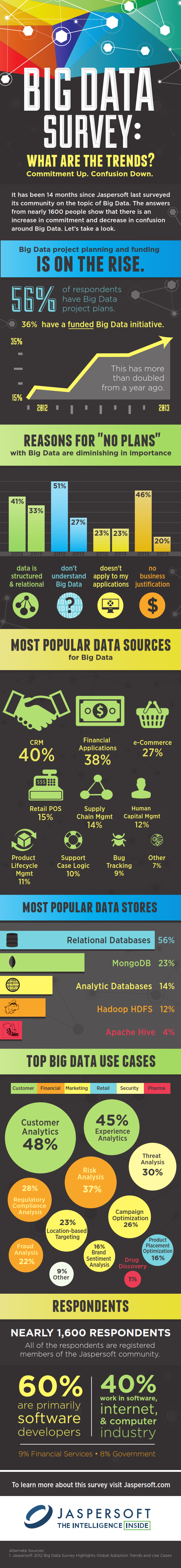 Big Data Survey Infographic FINAL_001