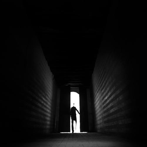Shadow It