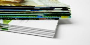 Shutterstock 274465913